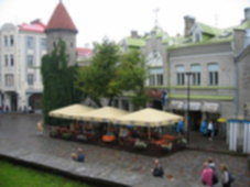 Kalle Kusta Tallinn