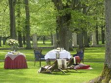 Boyars picnic